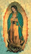 Our Lady Of Guadalupe Print   ShopMercy