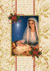 Christmas Enrollment Card   ShopMercy
