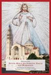 Divine Mercy Networking Forum and Workshops 2009 Highlights DVD | ShopMercy