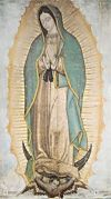 CLEARANCE - OUR LADY OF GUADALUPE POSTER - 14 X 24 | ShopMercy