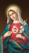 MARY - IMMACULATE HEART OF MARY 10 X 18 CANVAS, GALLERY WRAP | ShopMercy