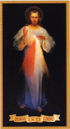 ALL - VILNIUS DIVINE MERCY IMAGE, SPANISH | ShopMercy