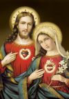 2009 Two Hearts Novena Card | ShopMercy