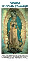 MARY - NOVENA TO OUR LADY OF GUADALUPE | ShopMercy