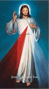 DIVINE MERCY - BLUE HYLA 10 X 18 CANVAS, GALLERY WRAP | ShopMercy