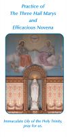 PAMPHLETS/PRAYERCARDS - PRACTICE OF THE THREE HAIL MARYS AND EFFICACIOUS NOVENA | ShopMercy