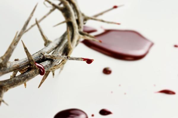 Una alianza sellada con sangre